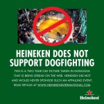 Heineken Dog Fight