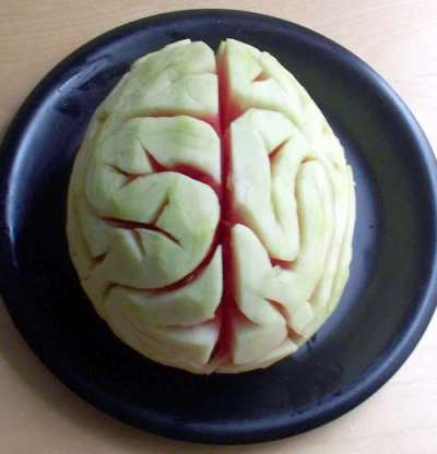 watermelon-brain