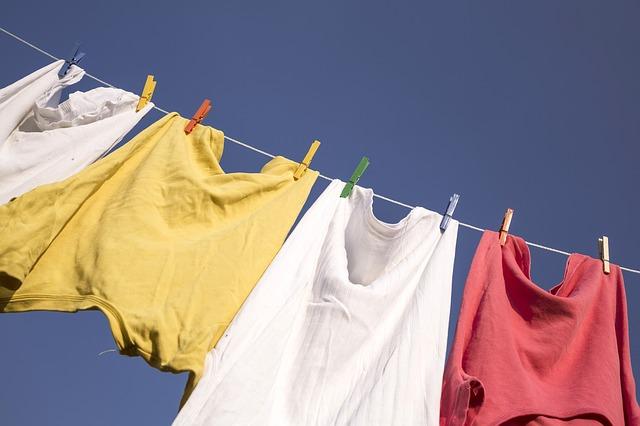 Summer washing... happened so fast... Photo courtesy of Pixabay