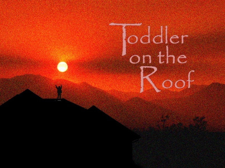 toddler on the roof fiddler on the roof